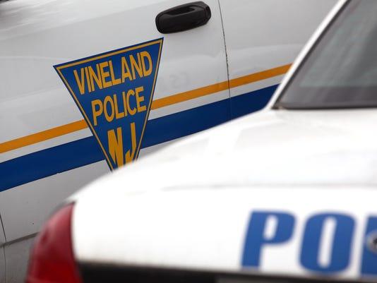 Vineland Police carousel 005