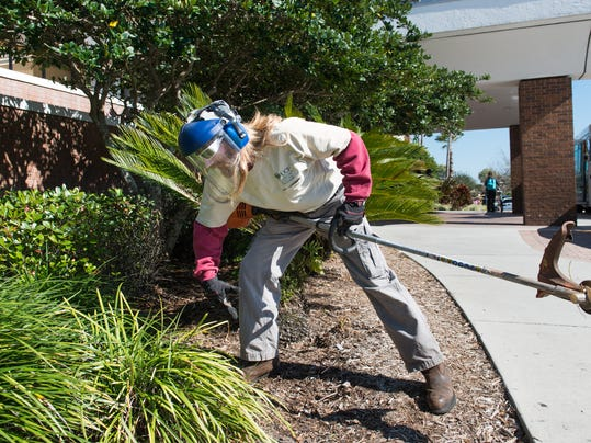 Campus Beautification_Daniel Smith_LNR.JPG