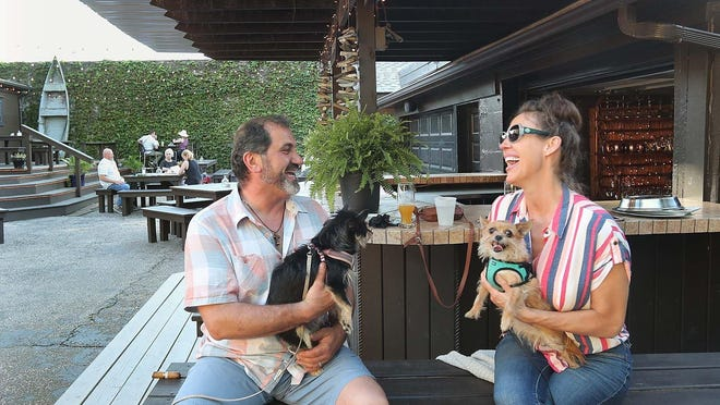 Ziad Chiti and wife Julie Chiti enjoy an evening last week out on the patio with their dogs Ici, left, and Nellie at the Old 97 Cafe on Kenmore Boulevard in Akron. Leashed dogs are allowed on the patio with their owners on Wednesdays.