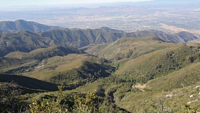 The San Bernardino National Forest.