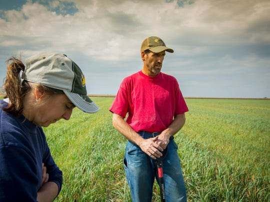 Earl Canfield and his wife, Jane, talk about the diversity of crops on their Dunkerton, Iowa, farm,  Monday, Oct. 2, 2017. Canfield has started growing oats, to help diversify his corn-soybean rotation. But finding he had nowhere to take the oats, he decided to start mixing them as feed for small operations raising cattle, horses and other livestock.