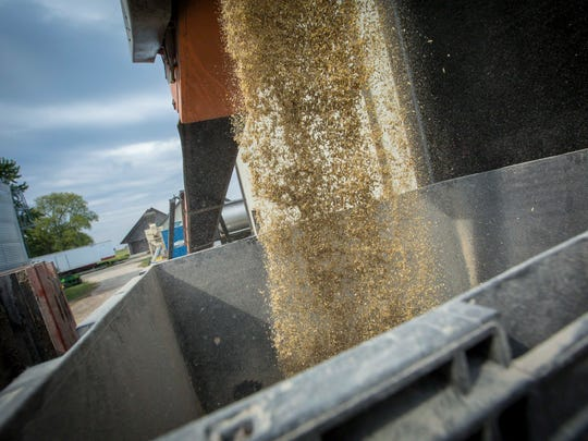 Mixed livestock feed for horses is put in a hopper at the Canfield farm near Dunkerton, Monday, Oct. 2, 2017.