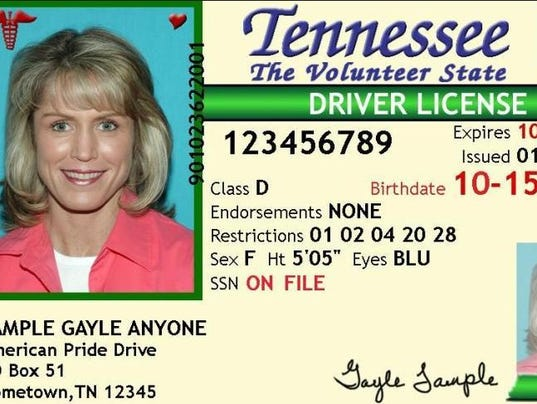 sample Tennessee driver's license (Photo: State of Tennessee): www.wbir.com/story/news/2014/02/27/law-would-put-sex-offender...