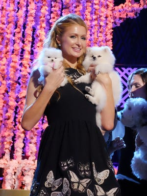 Paris Hilton and her Pomeranian dogs, Prince Hilton, right, and Princess Paris Jr. pose for pictures after the taping of the 2015 World Dog Awards.