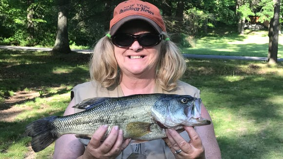 Carol launched her summer bass fishing by hooking this hawg Saturday.