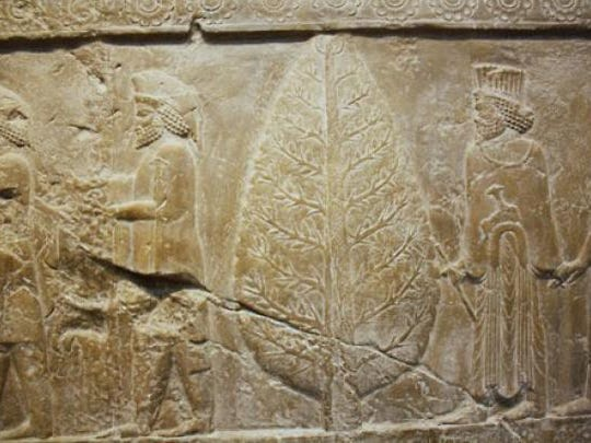 Seen here is a relief carving found at Persepolis, ceremonial capital of the Achaemenid Empire. A  Mithra and an evergreen tree are depicted.
