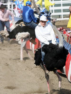 Ostrich racereturn to the Riverside County Fair & National Date Festival in Indio on Friday.
