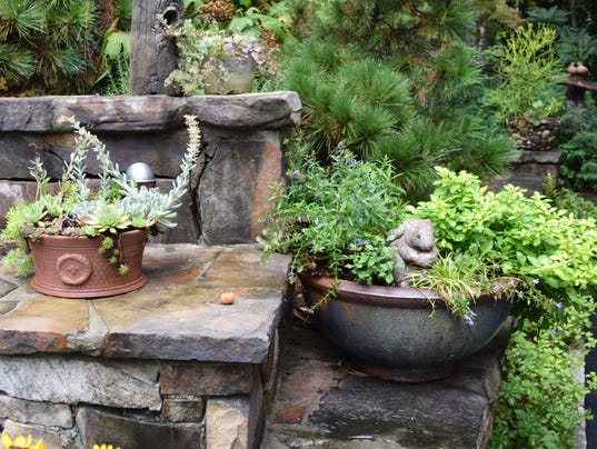 636395147726829348-Bunny-succulents-and-pines-2-.jpg