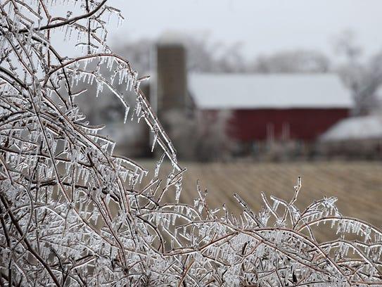 """Horror Frost"""