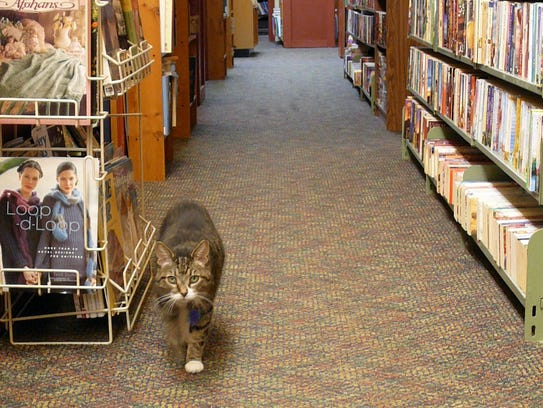 Look for Tigger inside of Thimbleberry Books, which