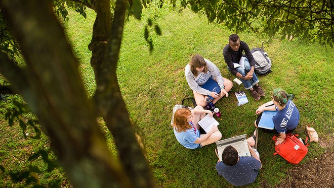 Students gather at UNC Asheville earlier this year. The school has again been named a 'best college value' among public universities.
