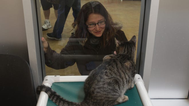 """The Palm Springs Animal Shelter held a """"Home for the Holidays"""" adoption drive on Saturday, Dec. 19."""