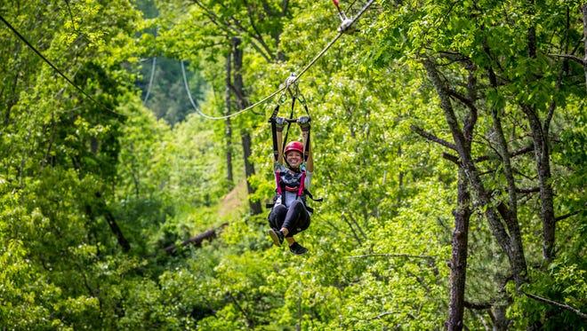 Navitat Canopy Adventures is in Barnardsville.