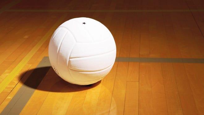 Volleyball court stock art