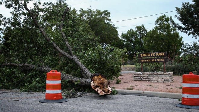 Toppled trees are spread throughout Santa Fe Park after a storm hit San Angelo Friday, June 23, 2017.