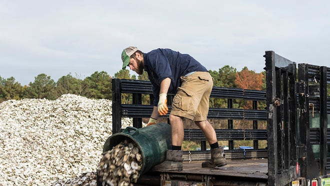 Shell Recycling Alliance driver Wayne Witzke dumps a can of oyster shell at Oyster Recovery Partnership's shell pile in Grasonville.