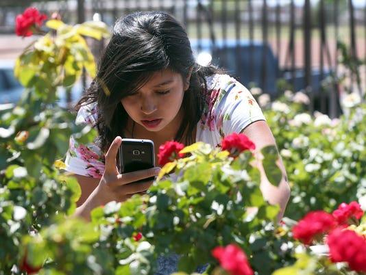 636325310415652531-Rose-Garden-Feature.jpg