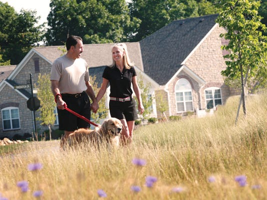 636317494810123532-Couple-Walking-in-Summer-with-dog.jpg