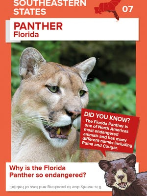 Winn-Dixie has started a new program of animal trading cards to educate children about wildlife.