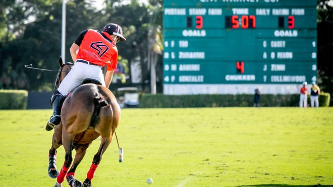 Play was postponed Wednesday for at least 14 days at the International Polo Club Palm Beach in Wellington. In this Feb. 9 photo at the International Polo Club Palm Beach, Postage Stamp Farms Tommy Collingwood drives a ball down field against Daily Racing Form during the C.V. Whitney Cup.