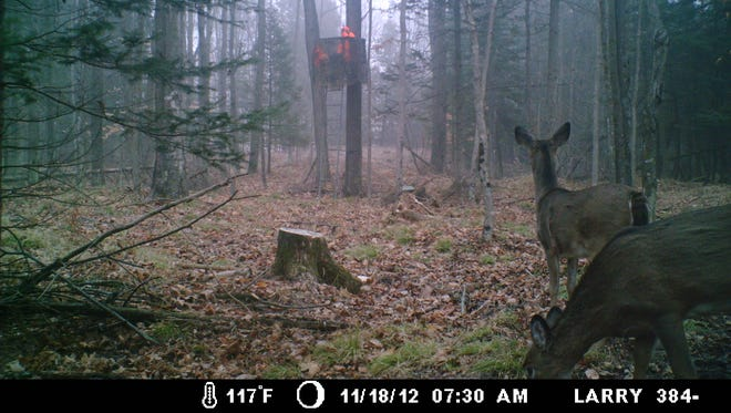 Taken on the opening day of the 2012 gun deer season in Marinette County. An entry in the Nov./Dec. 2014 trail camera photo contest sponsored by Mills Fleet Farm.
