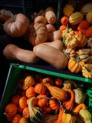 Squash from Underwood Family farms comes in all sizes and shapes at the downtown Ventura farmers market. The colorful fruits can be baked with butter and brown sugar or used as decorations.