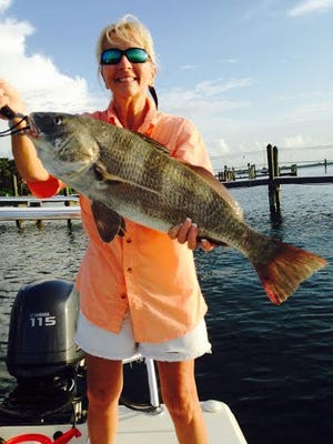 """Sharon Griffin reports her dandy black drum was """"pushing the slot limit"""" of 14 to 24 inches (although anglers are allowed one black drum larger than the slot size). She caught it on a live shrimp near Useppa Island, with Capt. Marty O'Neill."""