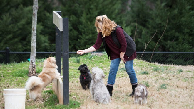 Teresa Engel plays with dogs in the dog park near the Pavilion Recreation Complex in Taylors on Monday, February 27, 2017.