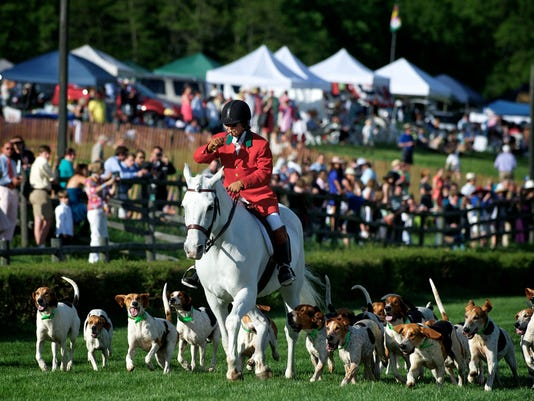 Parade of Hounds_3.jpg