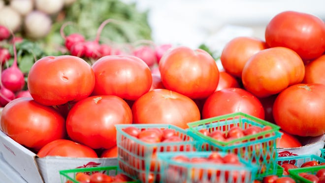 Look for new tomatoes in 2016.