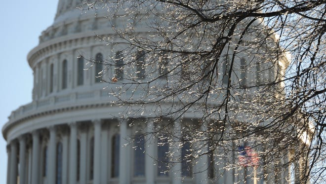 A tree at the U.S. Capitol glistens with ice in early morning light.