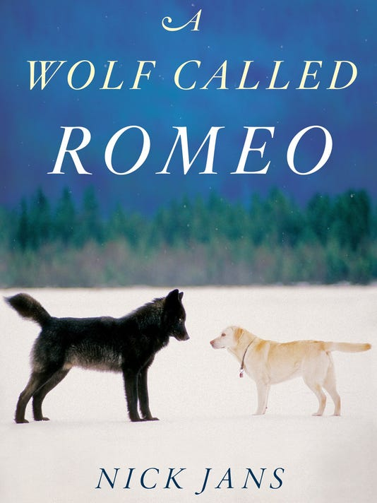 Wolf Called Romeo.jpg