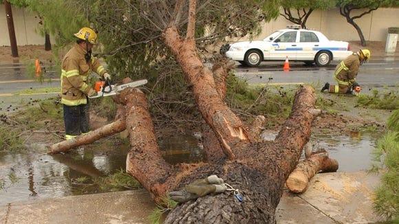 DIGITAL -- 9/3/04 -- Weather:  Mesa Firefighters Derek Williams (cq) left and Joe McKenzie (cq) clear a tree from Stapley Rd and E. Glencove St. in Mesa, Friday Sept., 3, 2004.  (David Kadlubowski The Arizona Republlic)