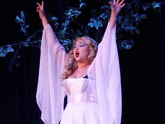 Magic Flute Queen of the Night art