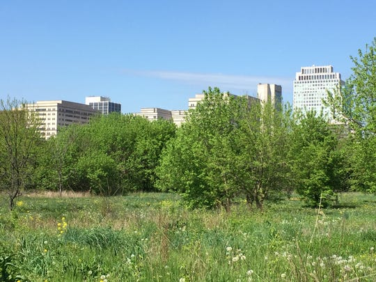 A grant of $197,500 from the EPA will allow Wilmington to redevelop two brownfields in the city.