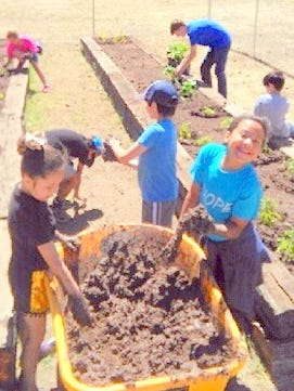 Getting their hands dirty and enjoying the experience are members of the Sierra Blanca Boys and Girls Club at their garden.