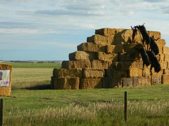 """Clint Carr's """"Buff-HAY-lo Jump"""" won first place at this year's Bale Trail."""