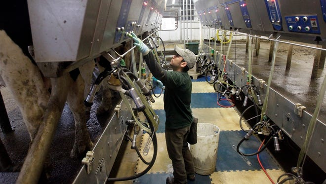Immigrant labor has become increasingly important for Wisconsin's dairy operations.