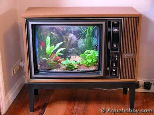 Turn an old vintage tube into a digital fish tank.