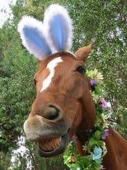 Horseback Easter Egg Hunts will be held through April