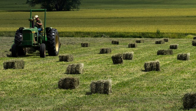 Gene Utley pulls a baler with his John Deere tractor and leaves behind perfect square bales of hay and clover on Proctor Stenger's Morganfield, Ky., farm.