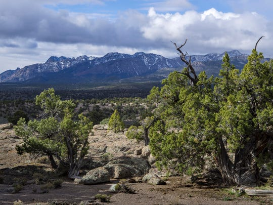 Park Range Wilderness Study Area, Nye County, Nevada