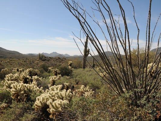 Mariposa Hill Trail