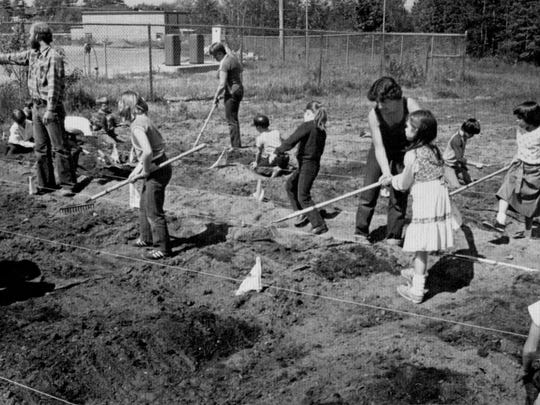 Students of all ages working in the Champlain Elementary School gardens.