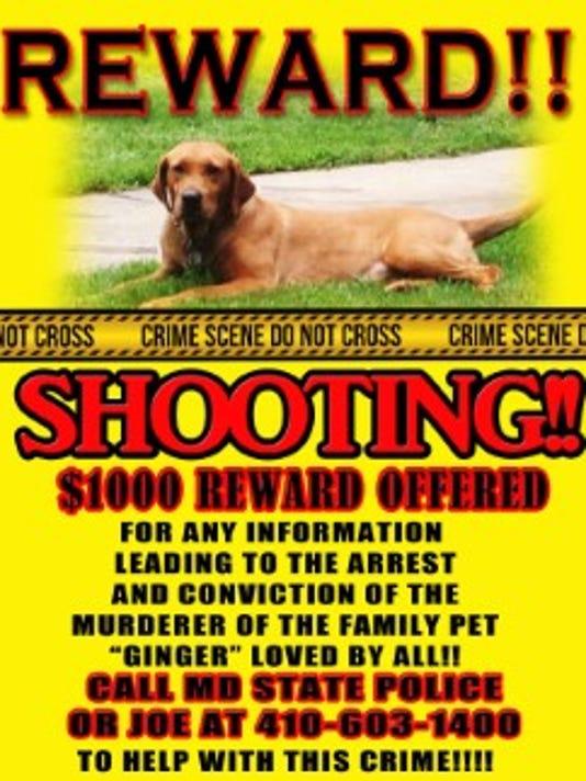 dead dog reward