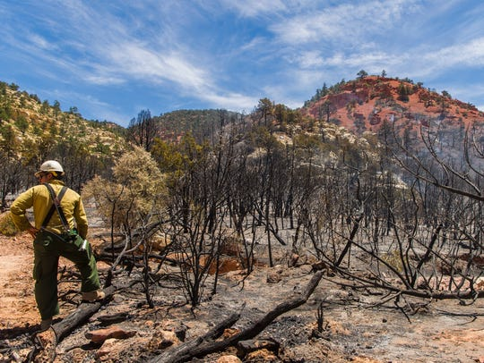 Firefighters work the scene of the Dry Canyon Fire