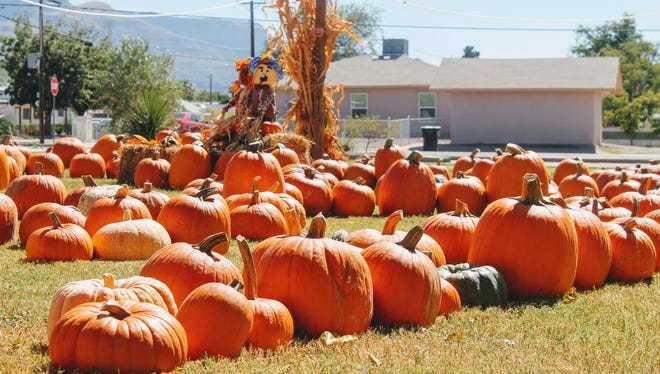 The pumpkin patch at Grace United Methodist Church, 1206 Greenwood Lane, is open Monday through Saturday from 9 a.m. to 6 p.m. and Sunday from 12 noon to 6 p.m.