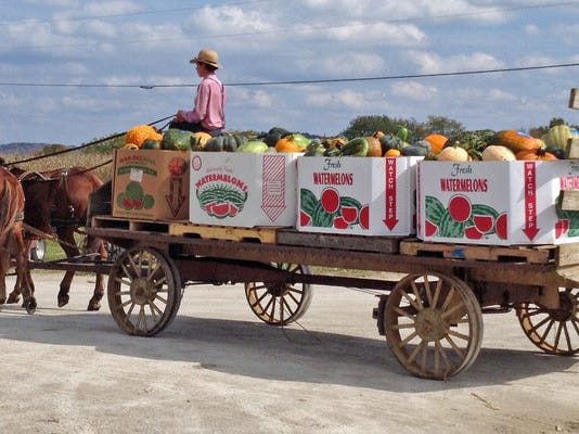 -Amish Produce Wagon.jpg_20140927.jpg