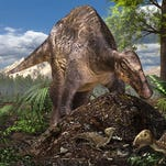 Study: Dinosaurs built different types of nests for their eggs