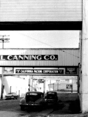 Photograph from Tin Cannery exhibit.